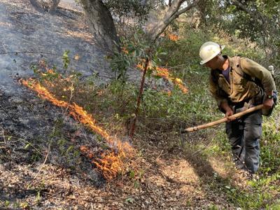 Lito fire response
