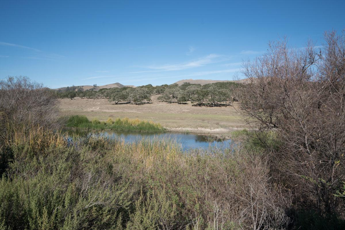 Land Trust easement with Campbell family