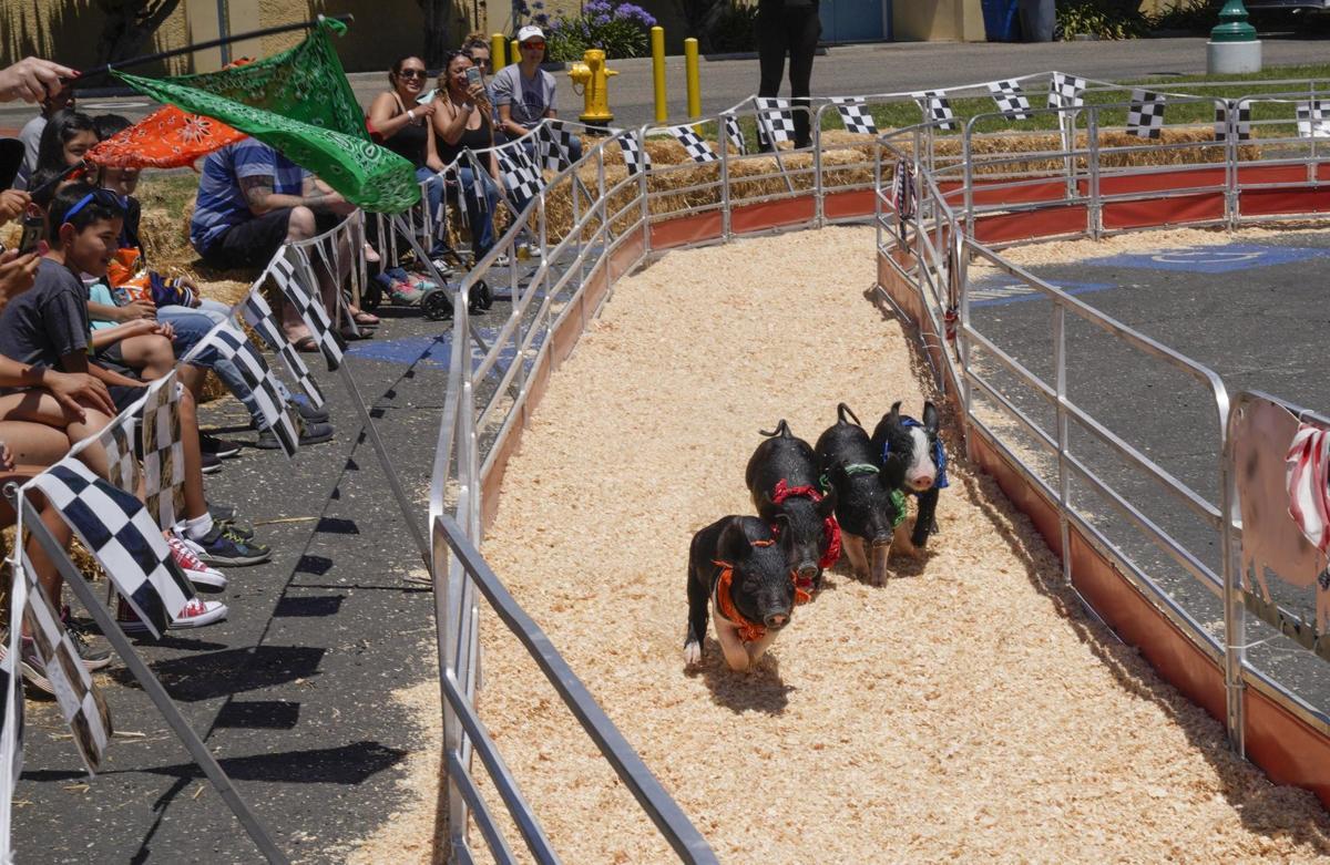 071019 Fair Opens 02.jpg
