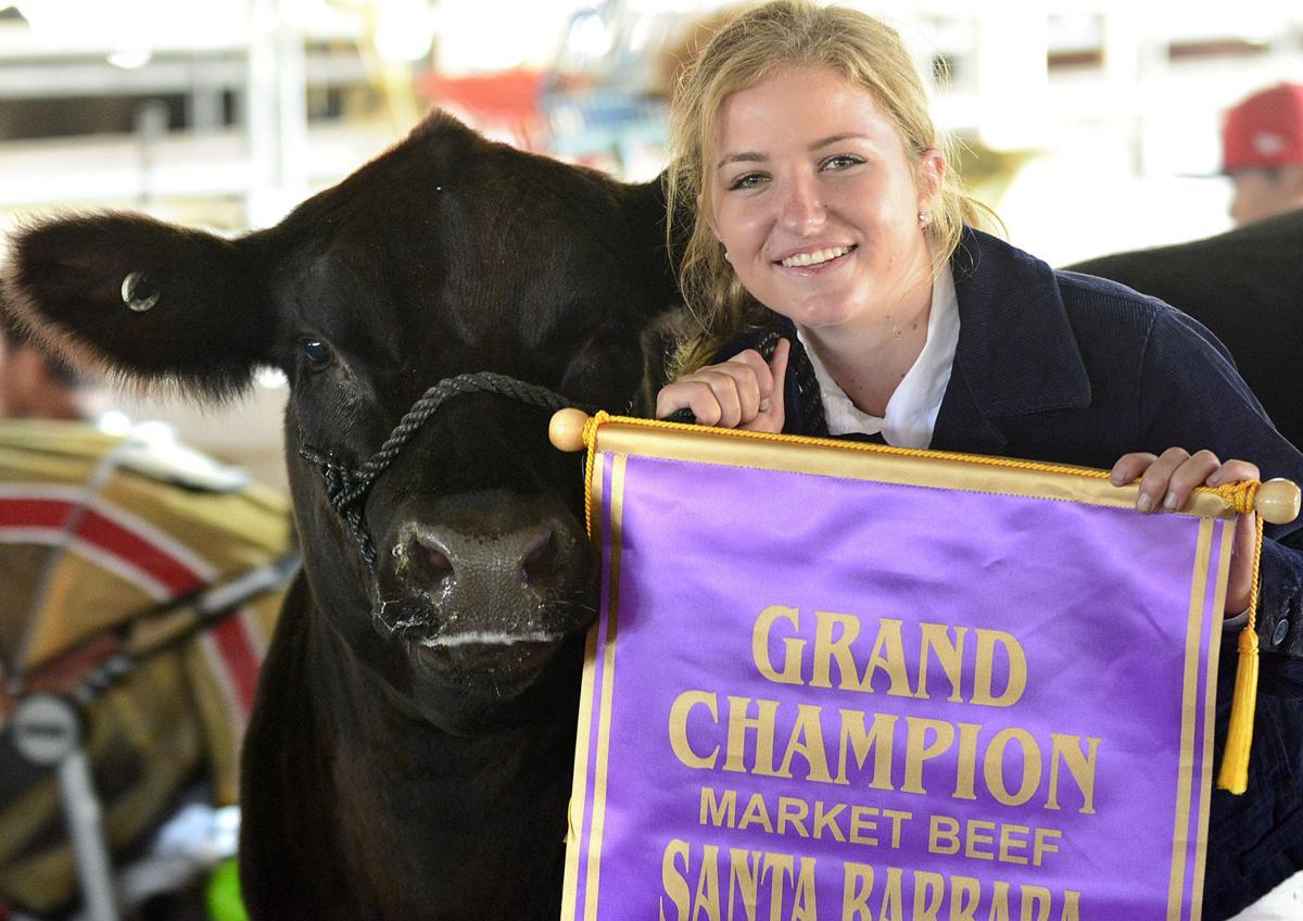 071018 County Fair steer judging 02.jpg