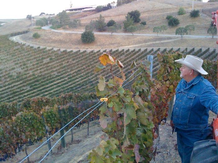 042720 Larry Saarloos in vineyards