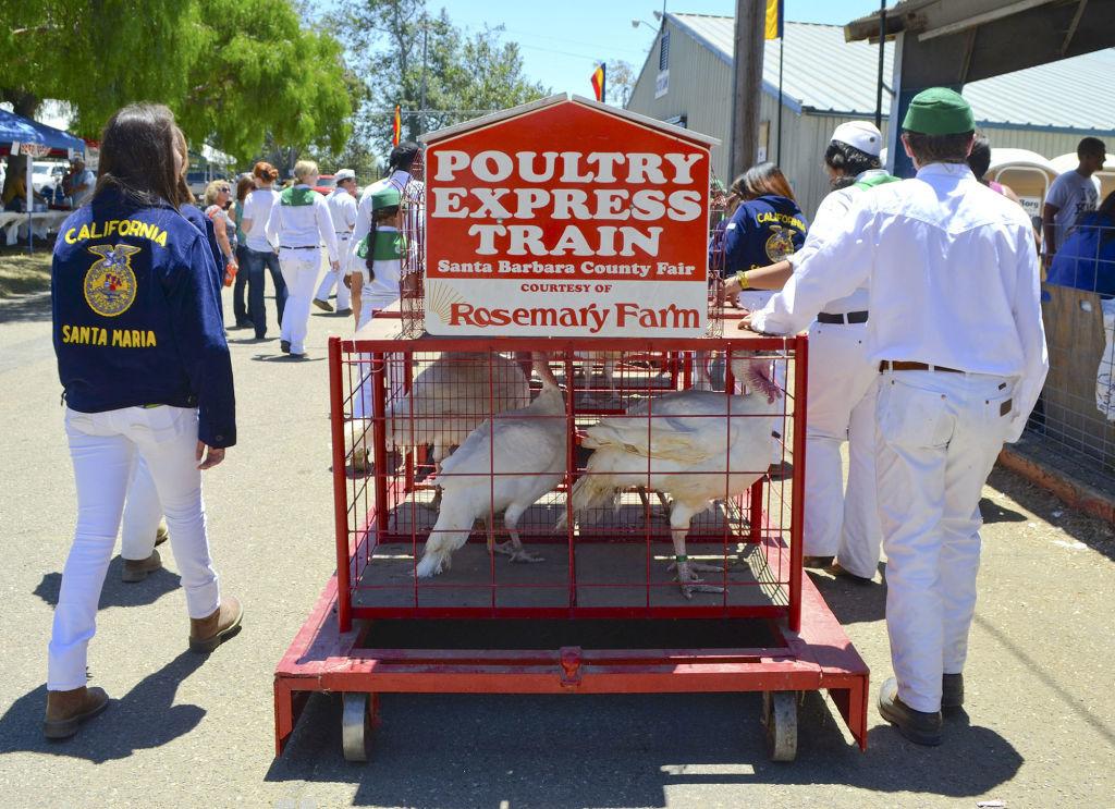 santa barbara county fair 2020