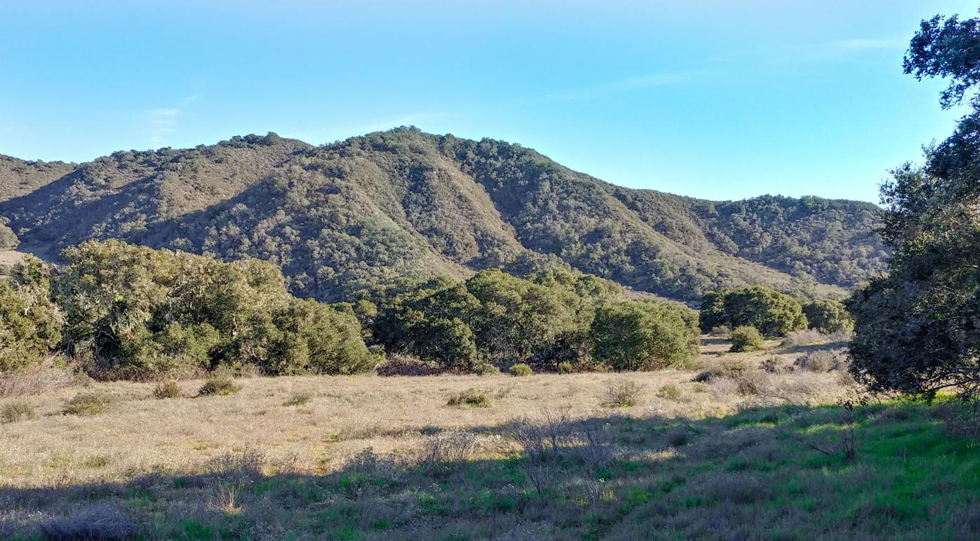 Yellow Foxtrot conservation easement