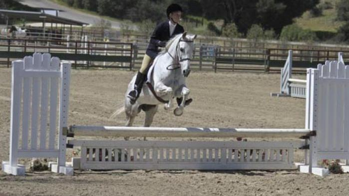 Santa Ynez Valley Equestrian Center Busy With Summer Shows
