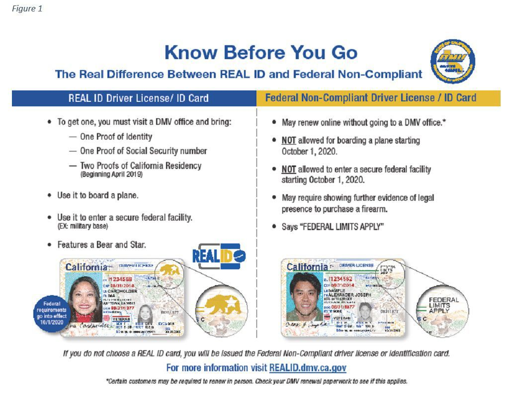 💐 Ca dmv driver license renewal application form | Driver