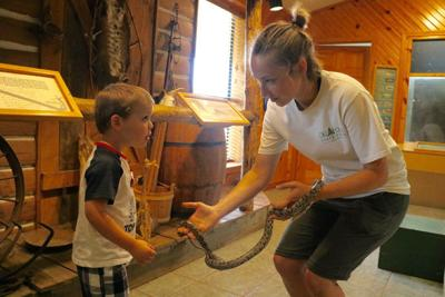 Local residents advised to steer clear of snakes