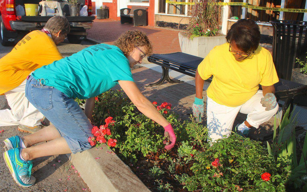 Garden club members maintain beautification projects   News ... on
