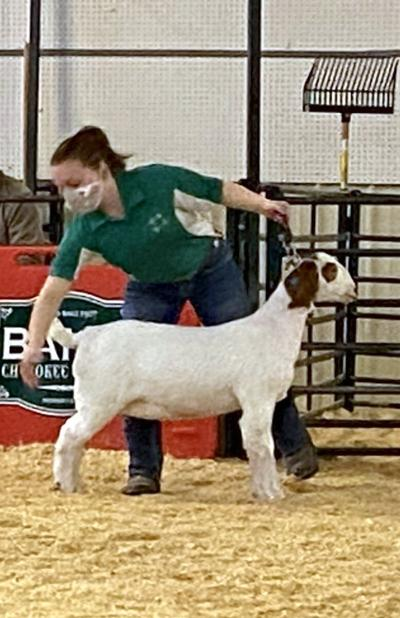 JUST KIDDING aROUND: Cherokee County Junior Livestock Show wraps up with goats