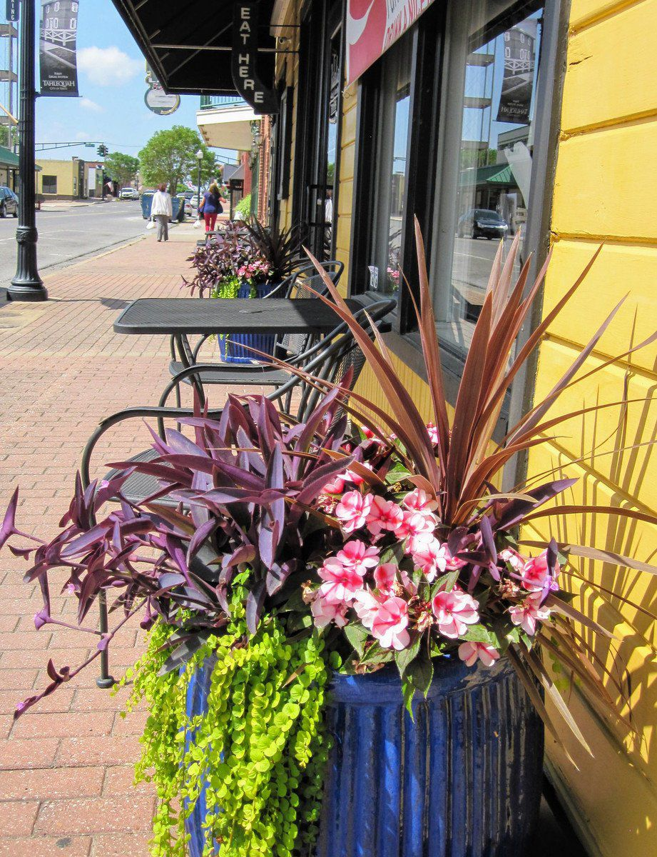 Garden Club announces Business Landscape Awards