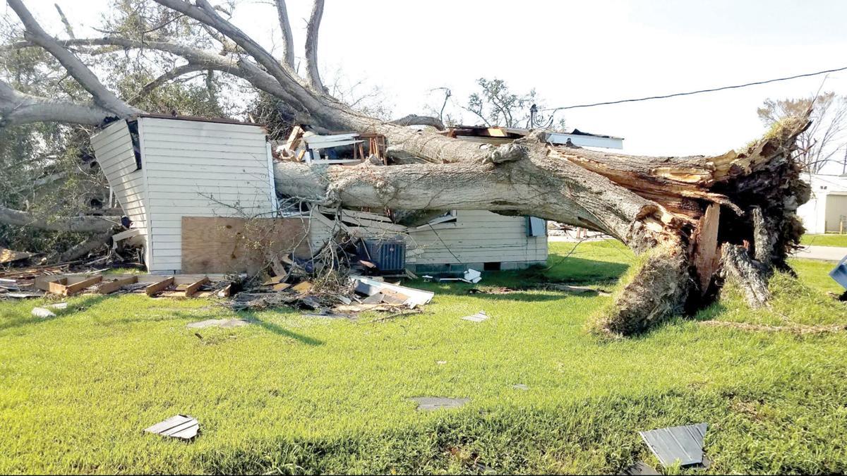 9-12 - nocfa - damage in LA.jpg