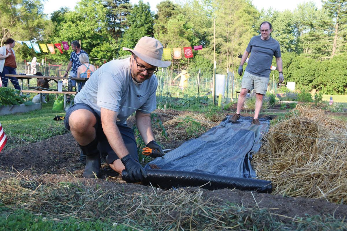 Fenton Community Garden 1.JPG