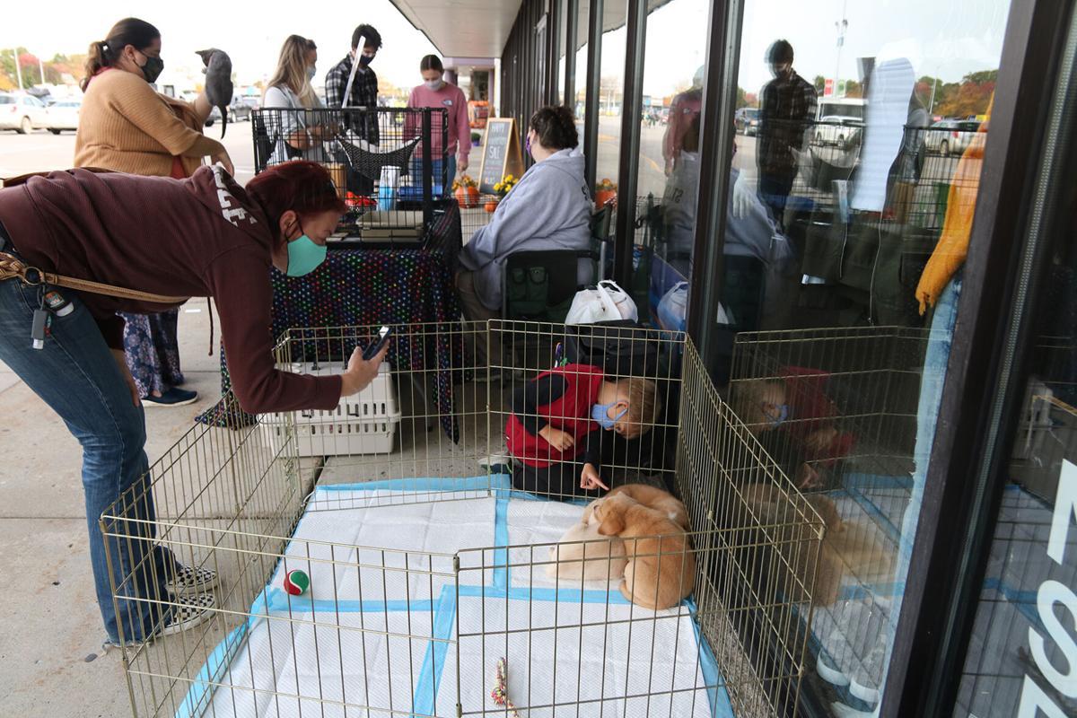 Glik's Adopt-A-Pet 1.JPG