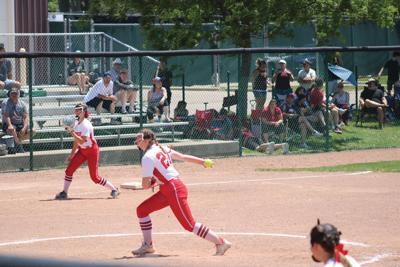 Holly pitcher.JPG