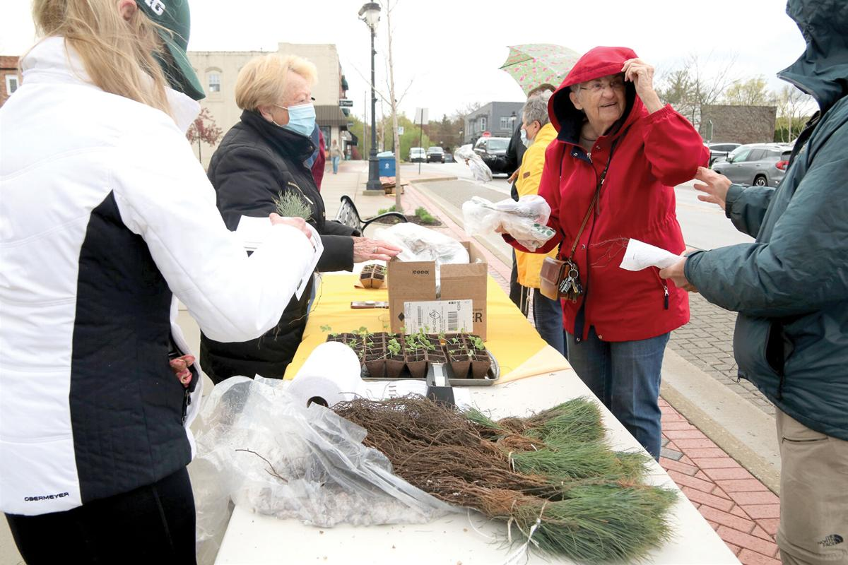 Arbor Day Beautification Commission 1.JPG