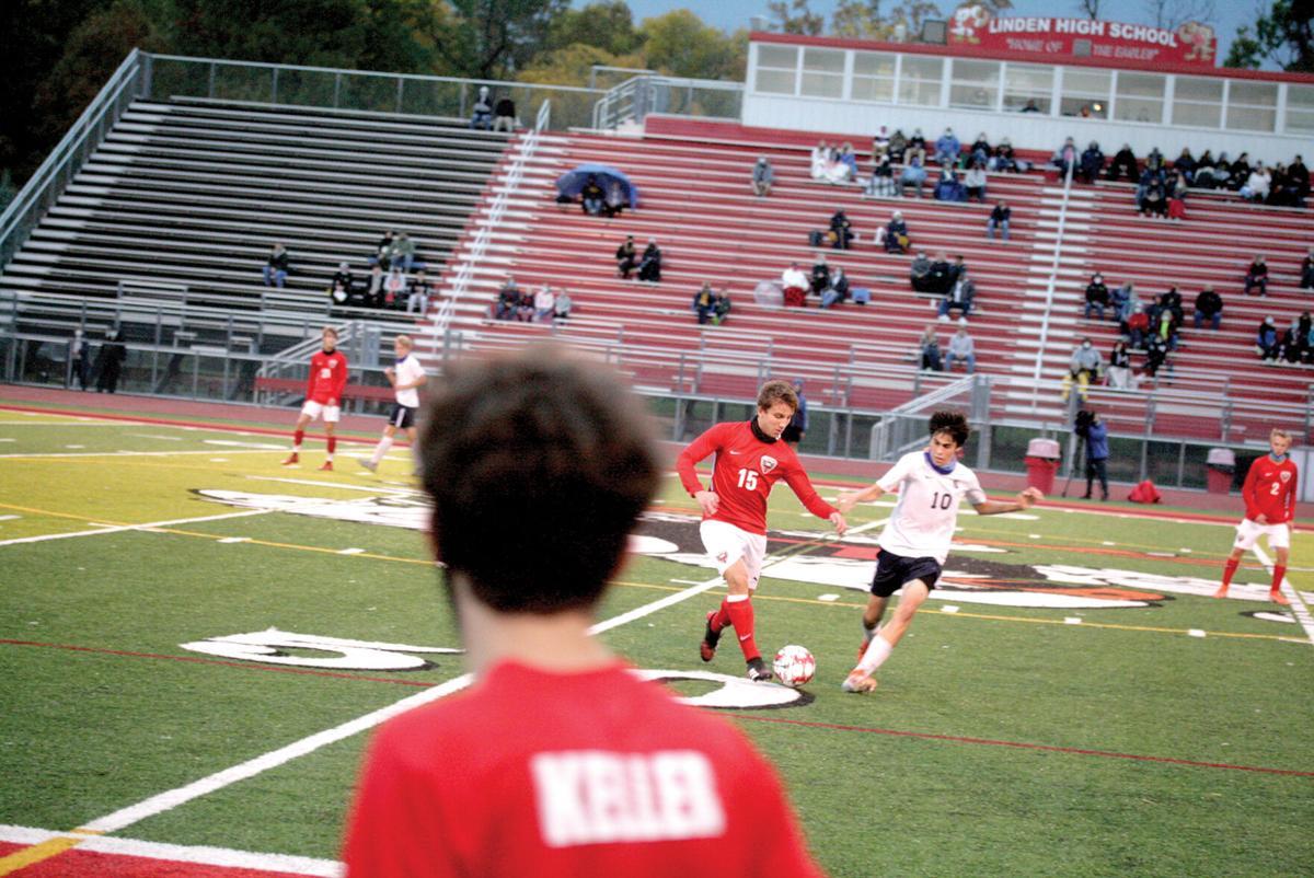 Linden photo 3.JPG