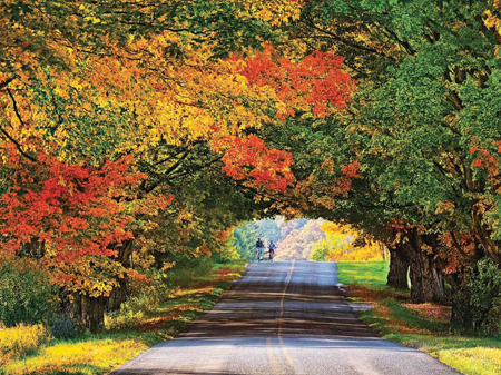Used Cars By Owner >> Michigan's peak color depends on next 30 days | News for ...