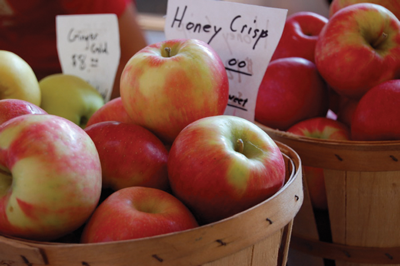 The Honeycrisp apple has an appealing color and a delicious flavor. Only licensed growers can grow and sell patented Honeycrisp apples.