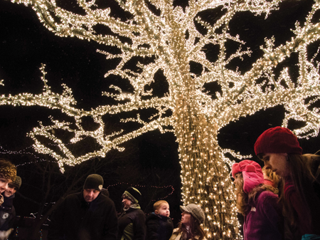 """The """"Tree of Light"""" serves as the backdrop for many photos at Crossroads Village in Genesee Township."""
