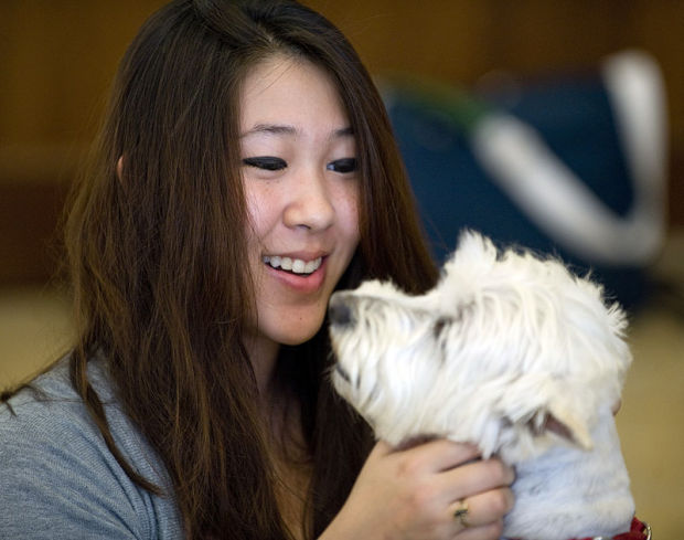 Therapy Dogs ease stress for students