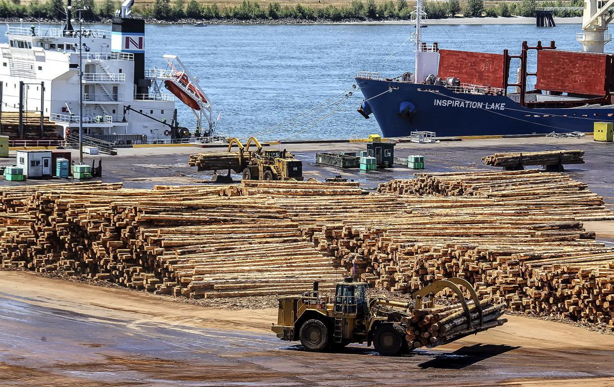 Weyerhaeuser logging