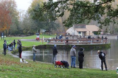 Anglers turn to trout