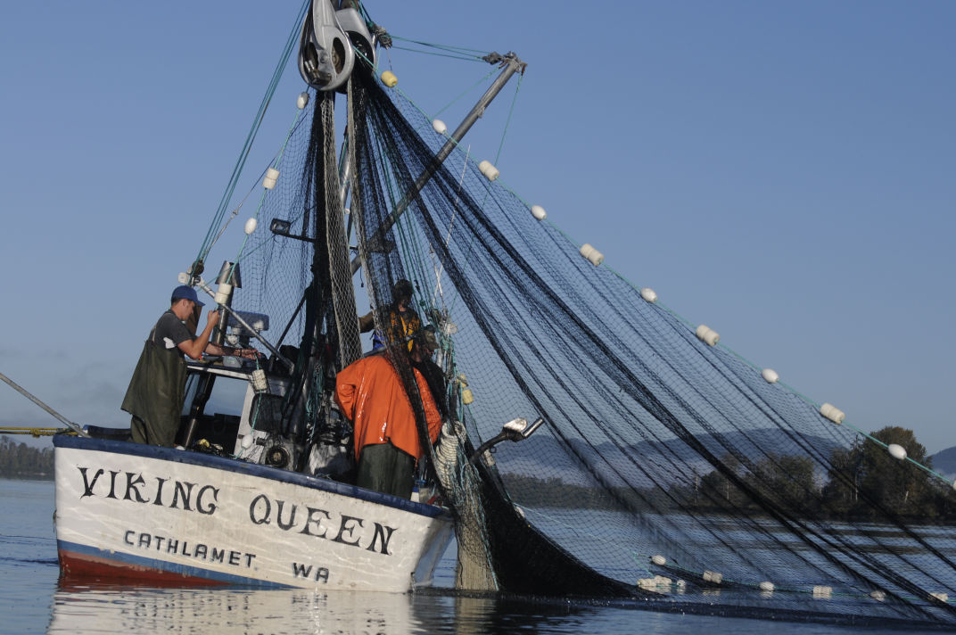 Seine net fishing set for columbia river outdoors for Commercial fishing jobs