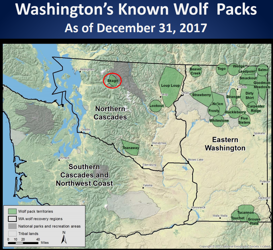 Washington wolf packs map