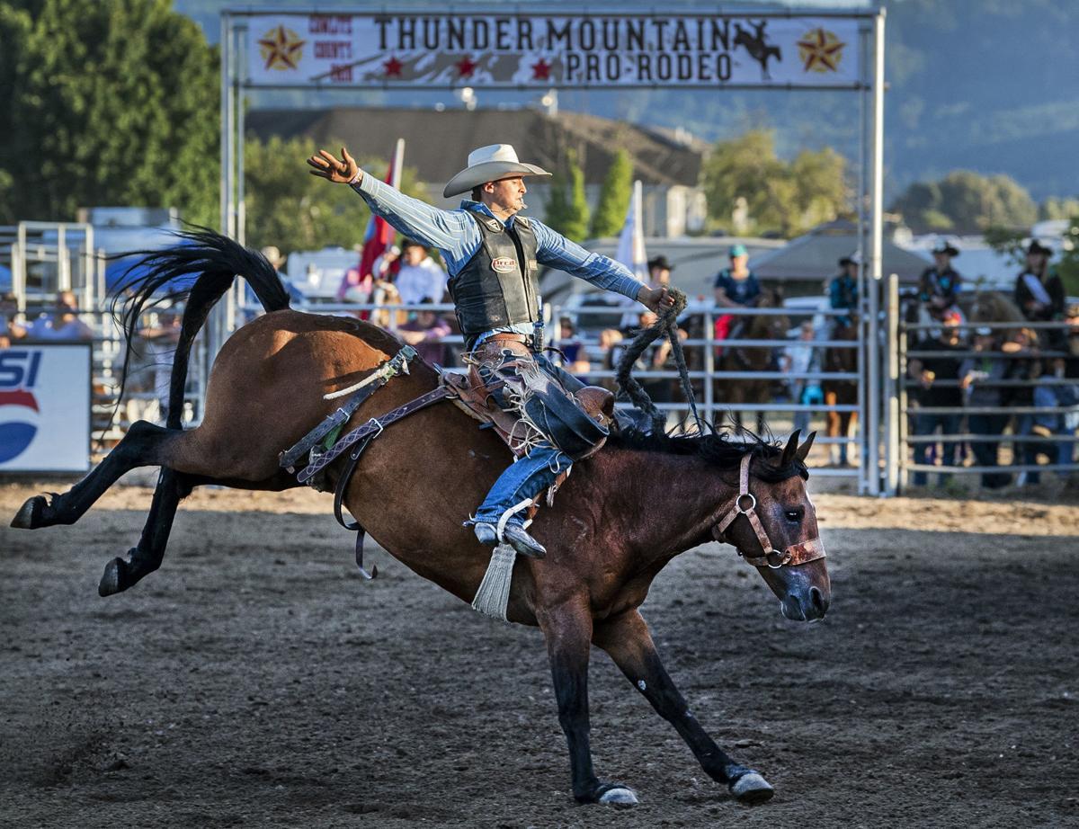 Thunder Mountain Pro Rodeo stock
