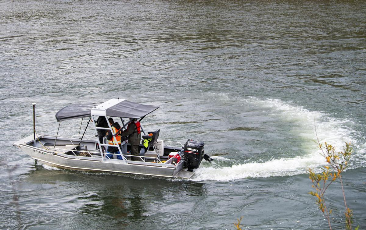 Cowlitz River survey 2019