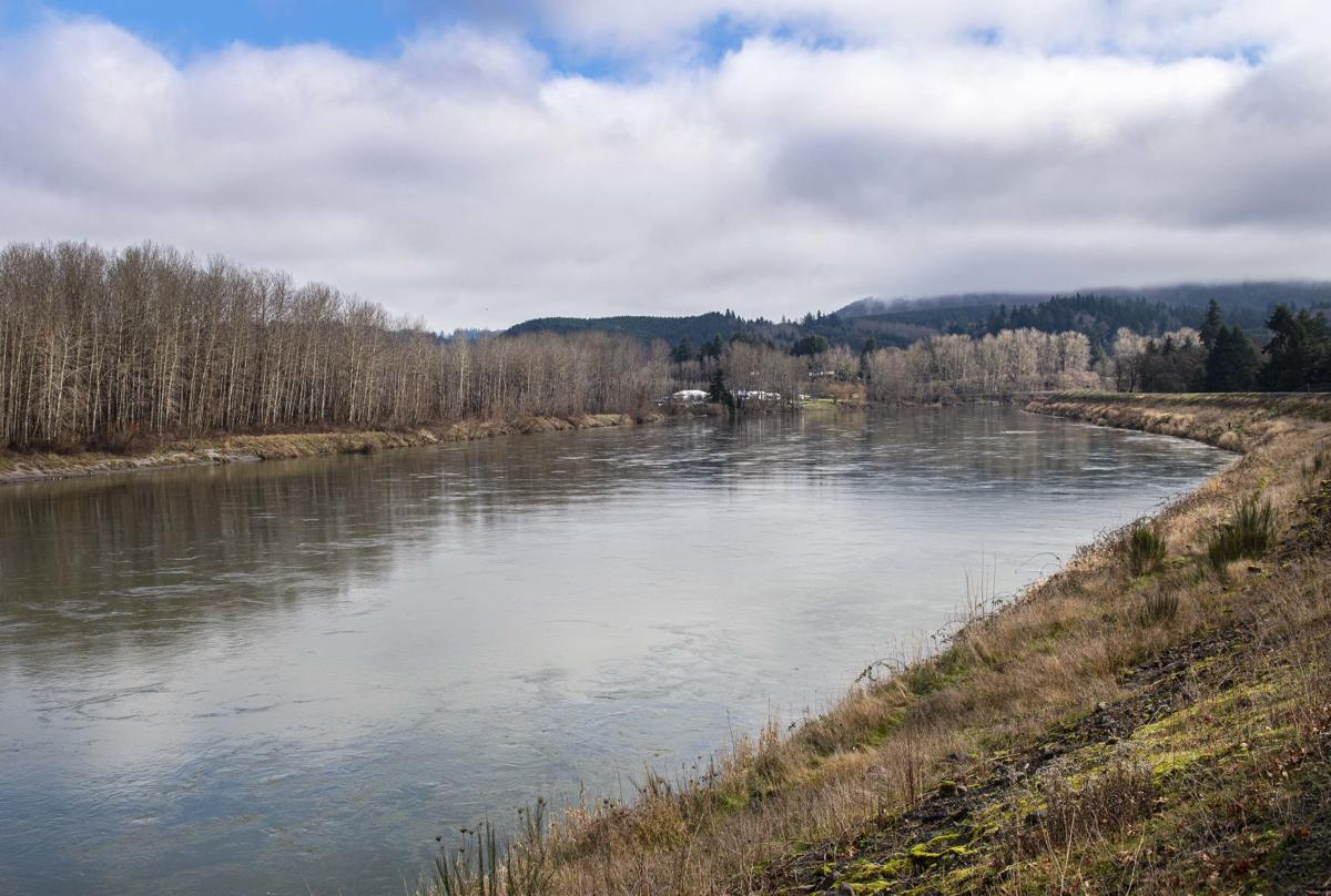 Cowlitz River near Lexington