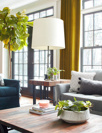 Tips For Using Trees And Plants As Decorative Accessories