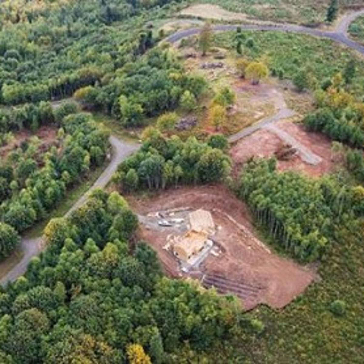 Weyerhaeuser finds real estate more profitable than growing