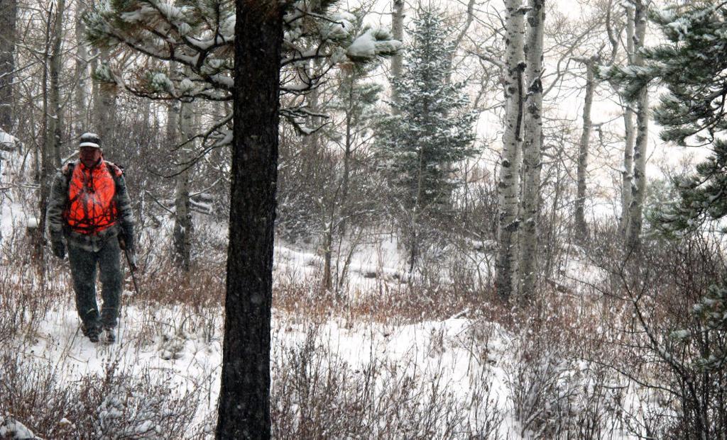 Southwest Washington elk hunting faces new complications