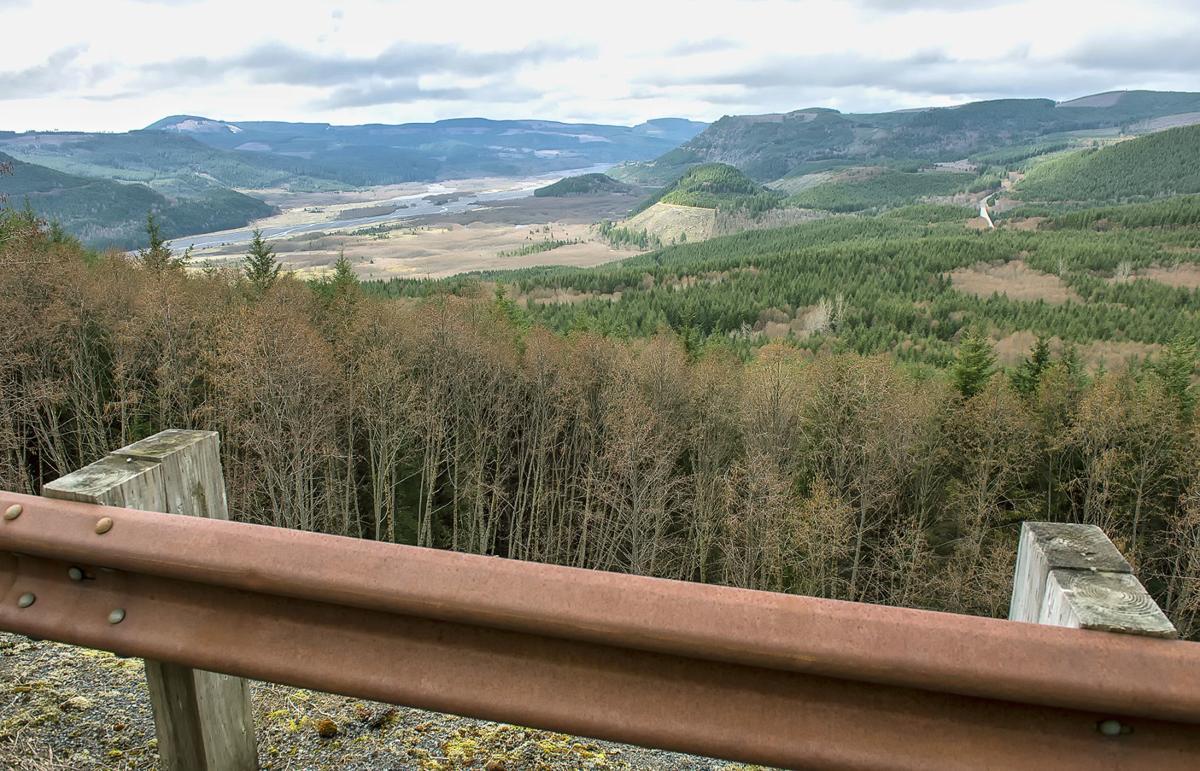 Donated elk habitat