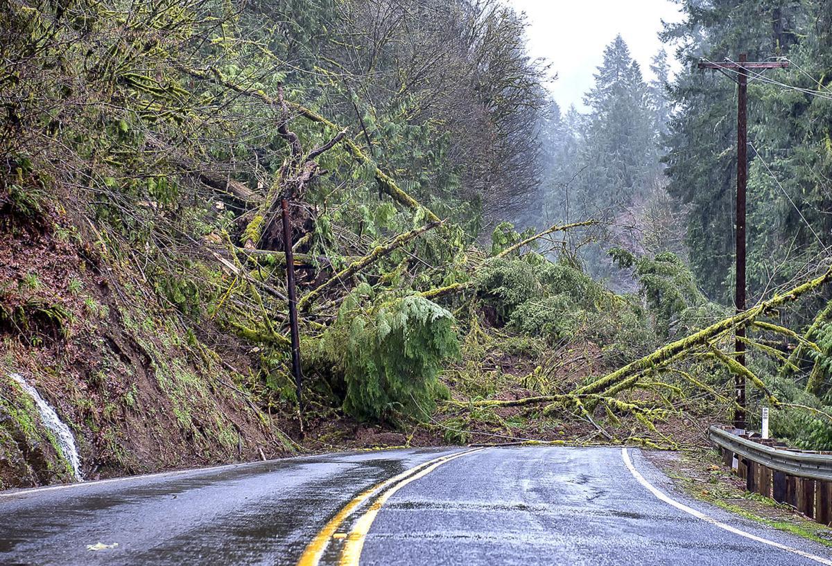 Kalama River Road Slide