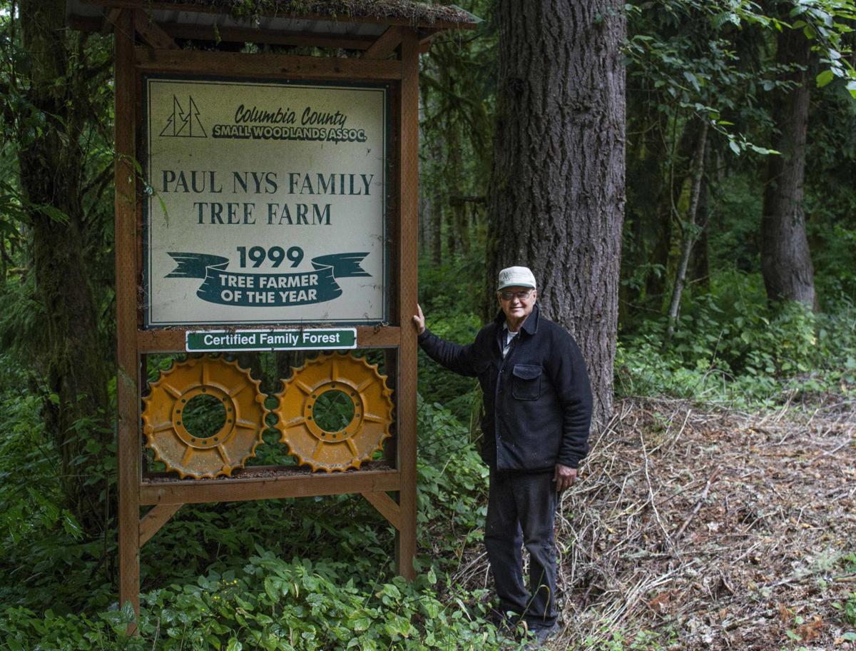 Paul Nys Family Tree Farm