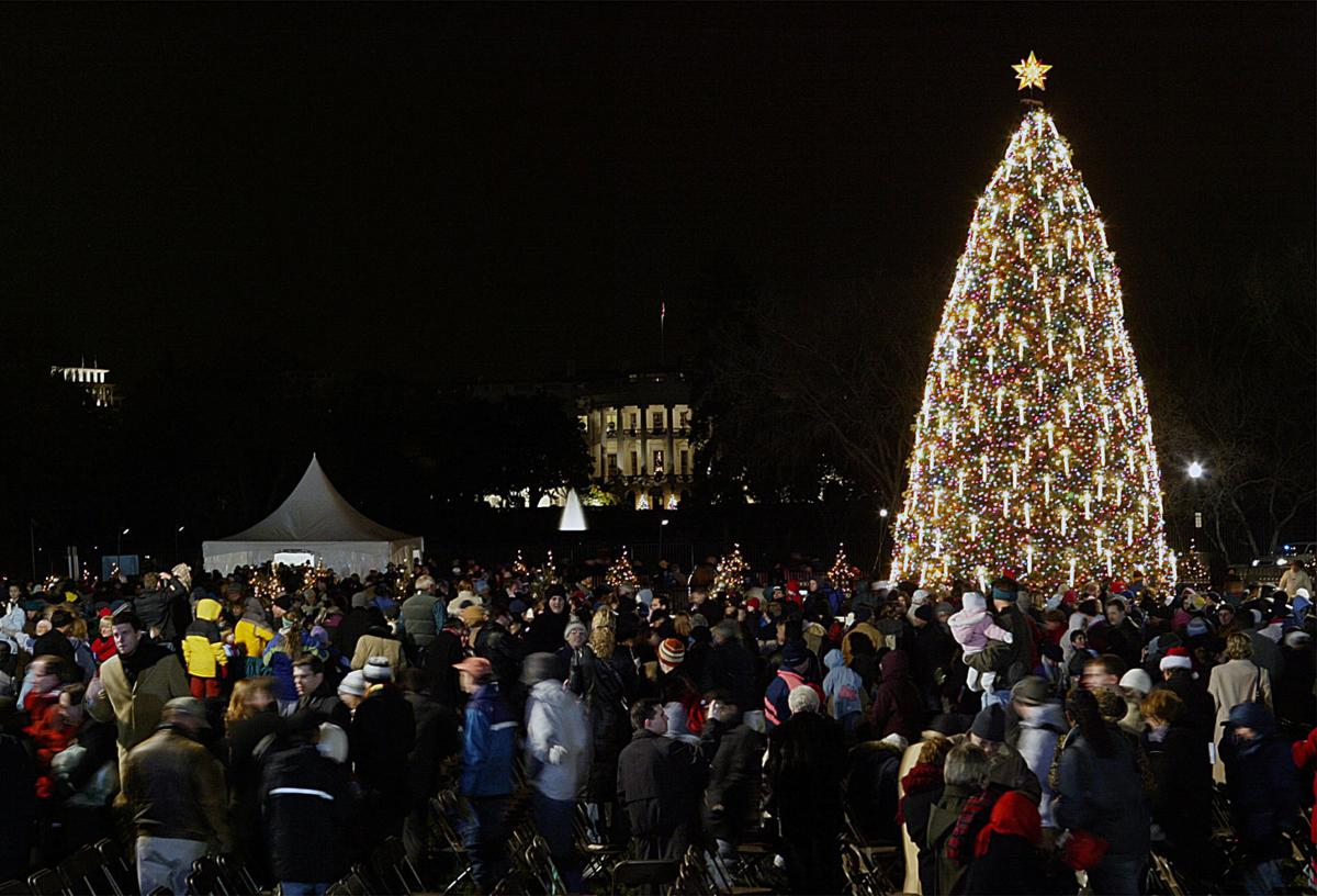 photos looking back at eight decades of national christmas trees lifestyles tdncom - White House Christmas Tree Lighting