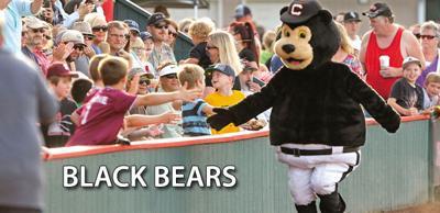 Black Bears logo