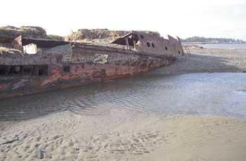 Shifting Sands Reveal 1965 Shipwreck Near Ocean Ss