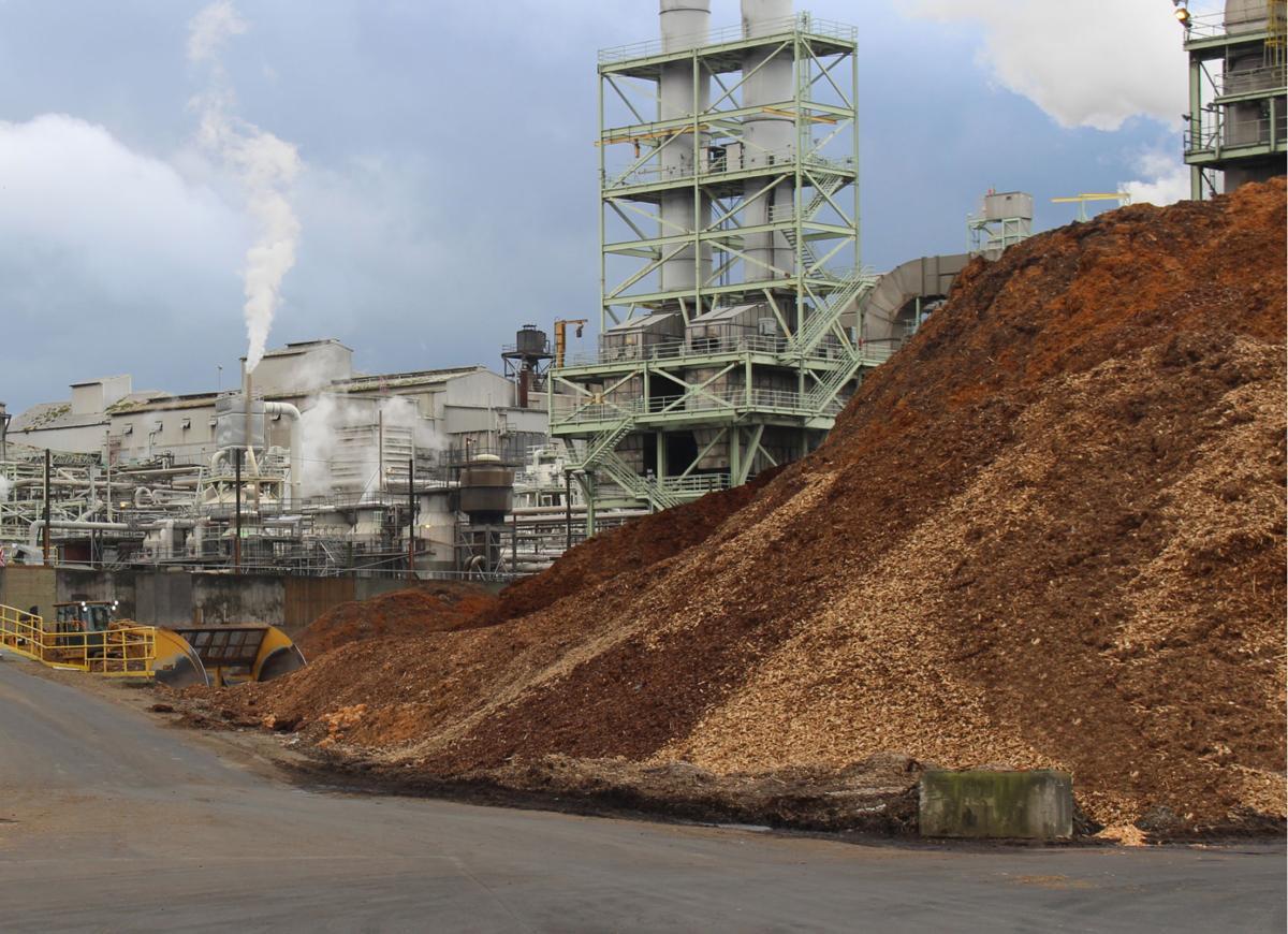 KapStone Biomass - Don't use