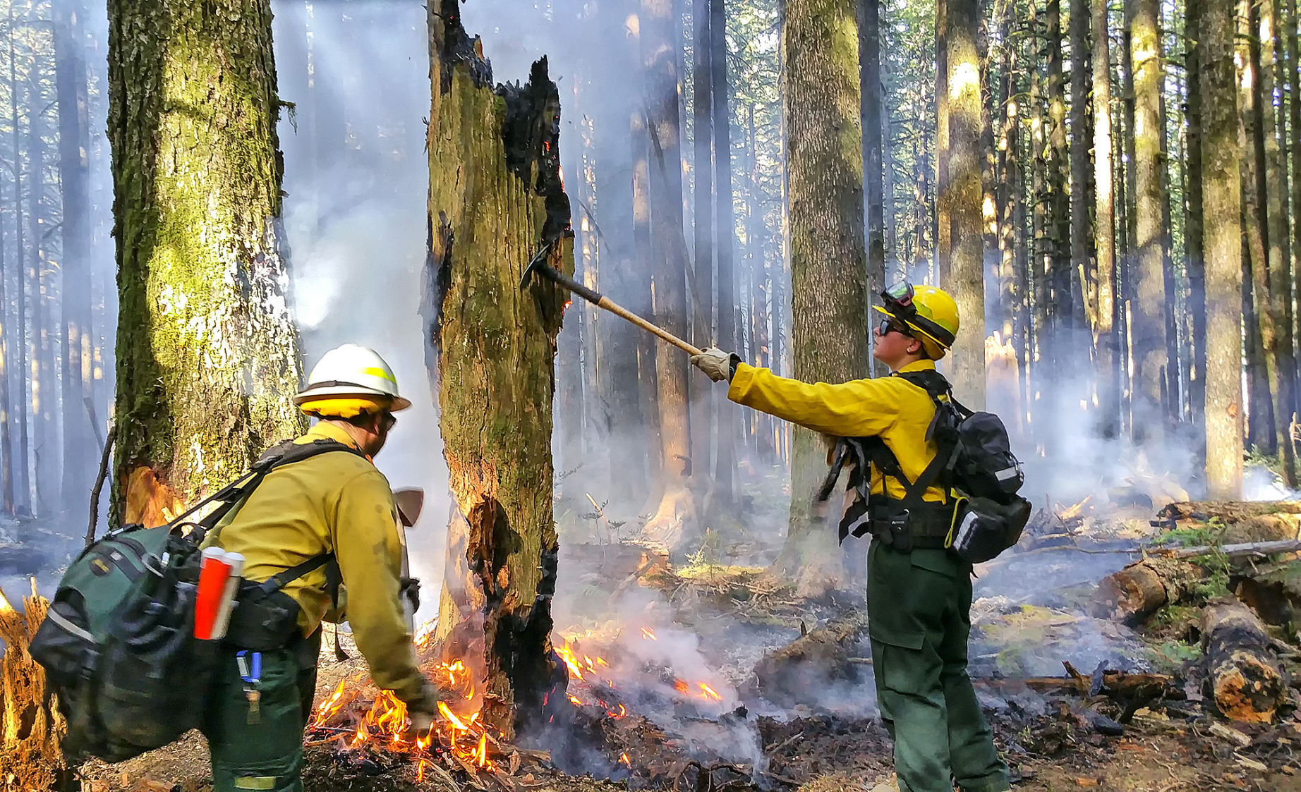Eagle Creek Fire 17 percent contained, more than 37500 acres burned
