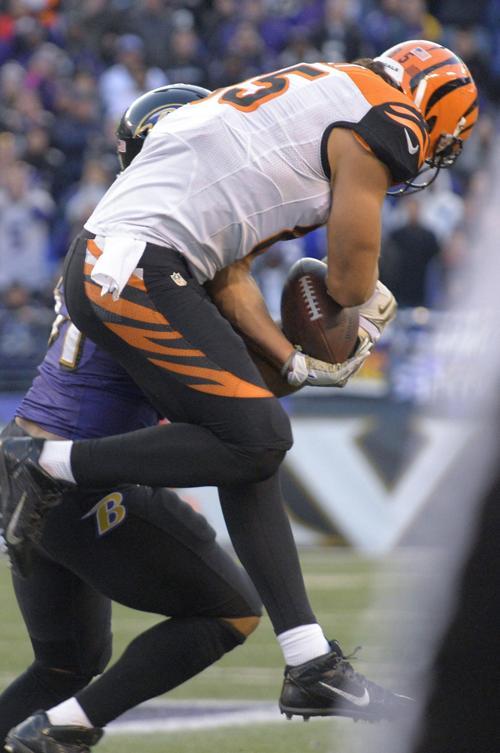 Cincinnati Bengals tight end Tyler Eifert makes a reception ahead of Baltimore Ravens linebacker Daryl Smith in Baltimore on November 10, 2013.
