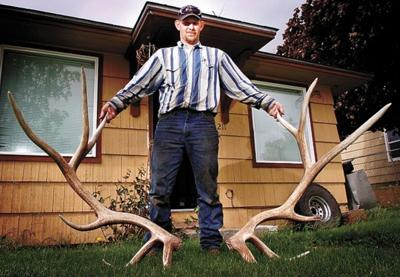 Stuck hunter finds huge elk sheds | Lifestyles | tdn com