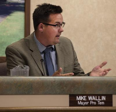Mike Wallin addresses council