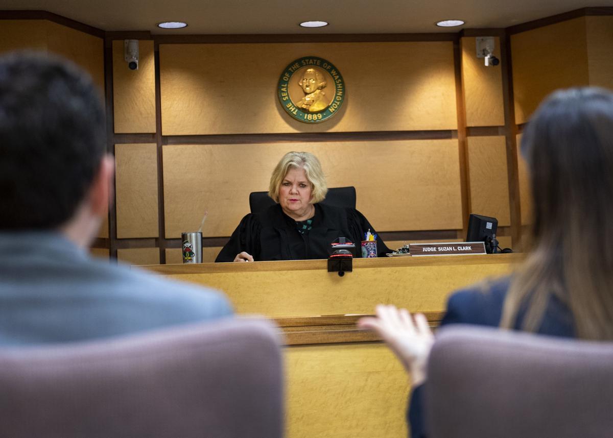 Judge Suzan L. Clark