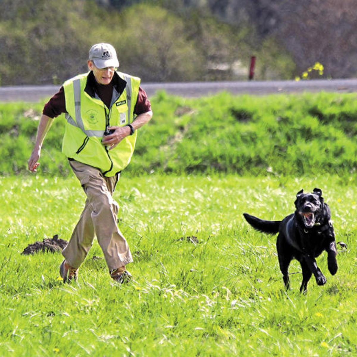 A Little Luck Constant Training Help Prepare Cadaver Dogs