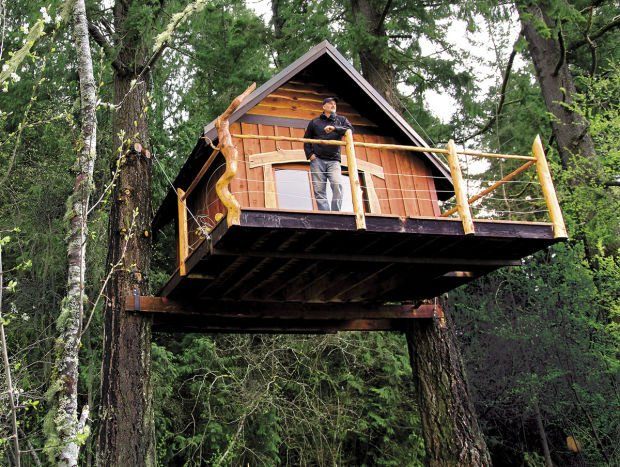 Goat island tree house partners turn to kickstarter to for Three tree treehouse plans