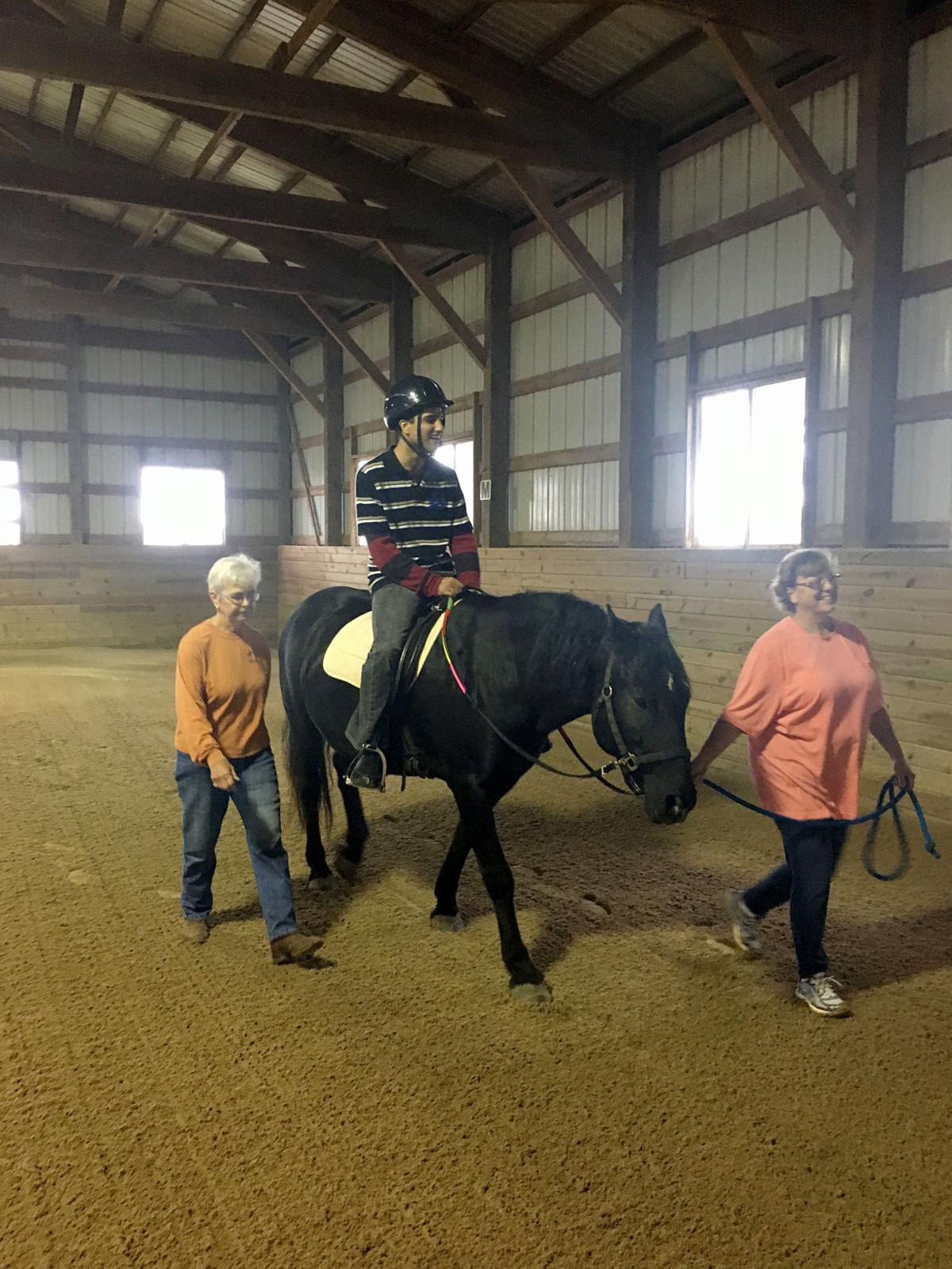 Horses and autism