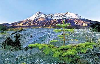 Mount St. Helens panel to recommend High Lakes land swap, Forest Service management