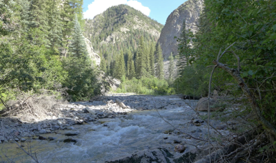 Ouray Water